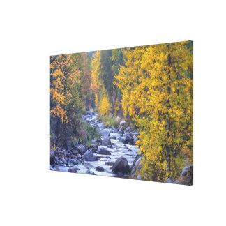 Autumn colors of forests in The Cascade 4 Canvas Print