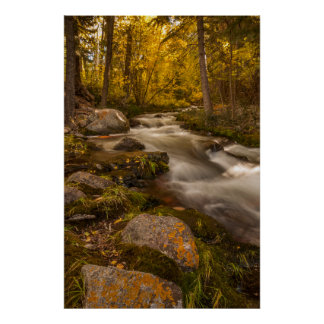 Autumn colors on Crestone Creek Poster