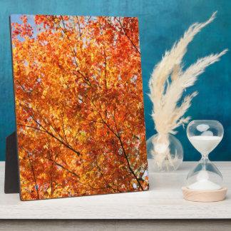 Autumn colors plaque