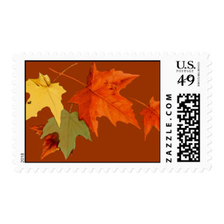 Autumn Colors Postage