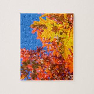 Autumn colors jigsaw puzzles