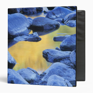 Autumn colors reflected in a wading pool, 3 ring binder