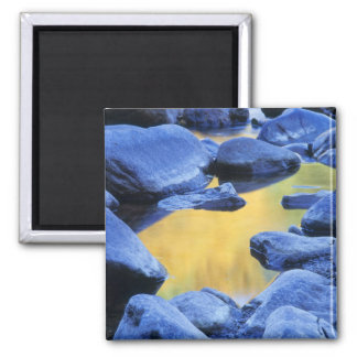 Autumn colors reflected in a wading pool, magnet