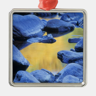 Autumn colors reflected in a wading pool, metal ornament