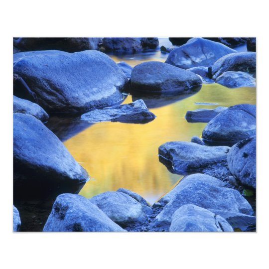 Autumn colors reflected in a wading pool, photo print