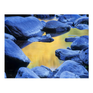 Autumn colors reflected in a wading pool, postcard