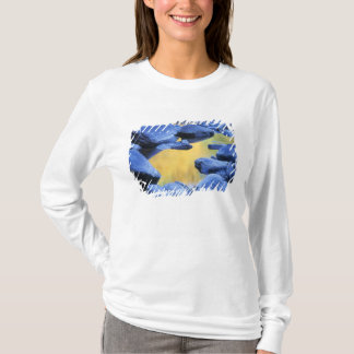 Autumn colors reflected in a wading pool, T-Shirt