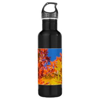 Autumn colors water bottle