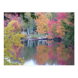 Autumn Coloured Leaves Postcard