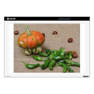 """Autumn composition 17"""" laptop decal"""