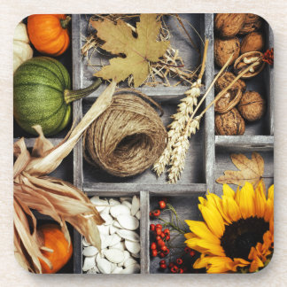 Autumn Composition In Wooden Box Coaster