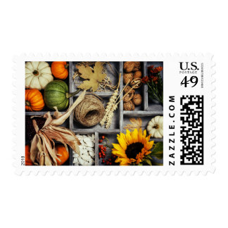 Autumn Composition In Wooden Box Postage