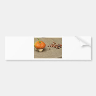 Autumn composition with pumpkin and hazelnuts bumper sticker