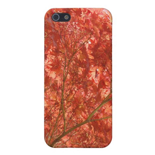 Autumn Covers For iPhone 5