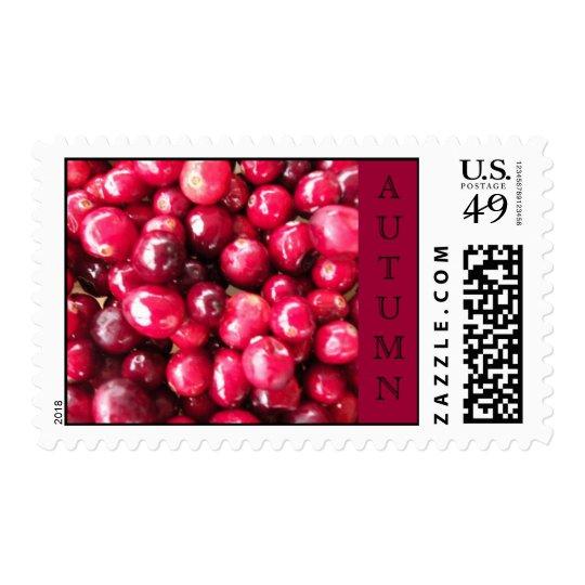 Autumn Cranberries Postage Stamp