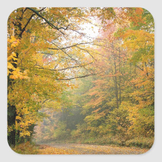 Autumn Crisp Afternoon Vermont Square Stickers