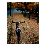 Autumn Cyclist Posters