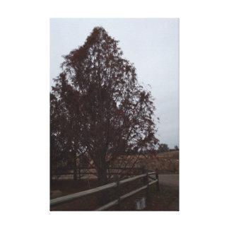 Autumn day canvas prints