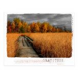 photo, filter, color splash, autumn, fall,