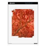 Autumn Decals For iPad 2