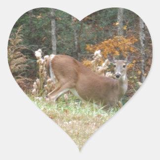 Autumn Deer in Lake Arrowhead GA Heart Sticker