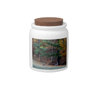 Autumn Deer in the distance Candy Jars