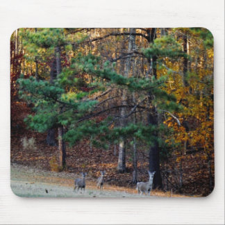 Autumn Deer in the distance Mouse Pad