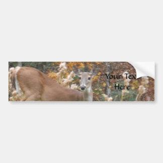 Autumn Deer ,your text Bumper Sticker