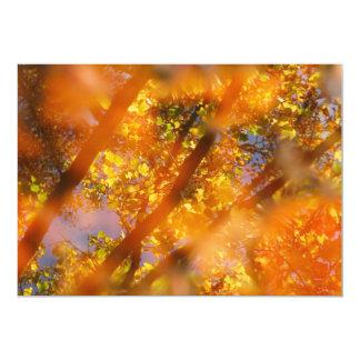 Autumn Delight Card