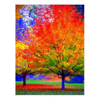 Autumn Delight - saturated Postcard
