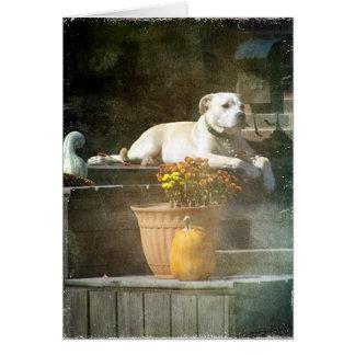 Autumn Dog Card