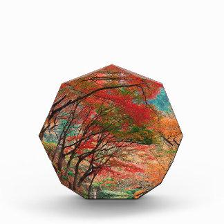 Autumn Down Garden Path Acrylic Award