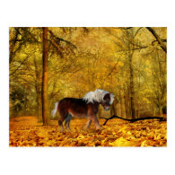 Autumn draft horse post cards