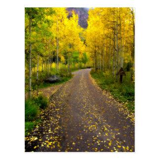 Autumn Dream Postcard