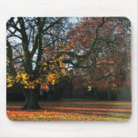 Autumn Dreaming Mouse Pad