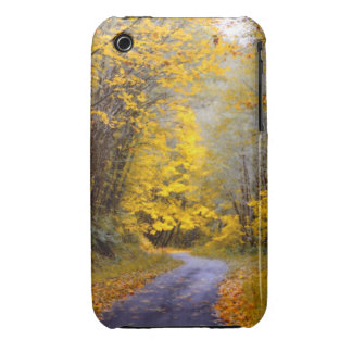 Autumn Drive iPhone 3 Case-Mate Case