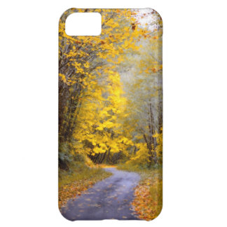 Autumn Drive Cover For iPhone 5C