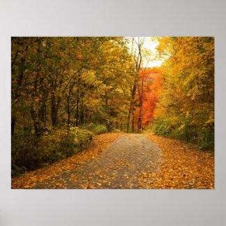 Autumn Drive Print