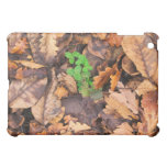 Autumn Dry Leaves and Green Clovers iPad Mini Cover