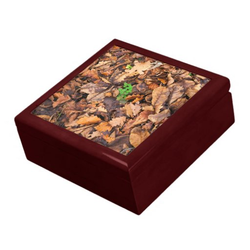 Autumn Dry Leaves and Green Clovers Keepsake Box