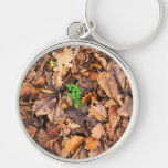 Autumn Dry Leaves and Green Clovers Key Chains