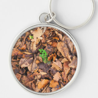 Autumn Dry Leaves and Green Clovers Silver-Colored Round Keychain
