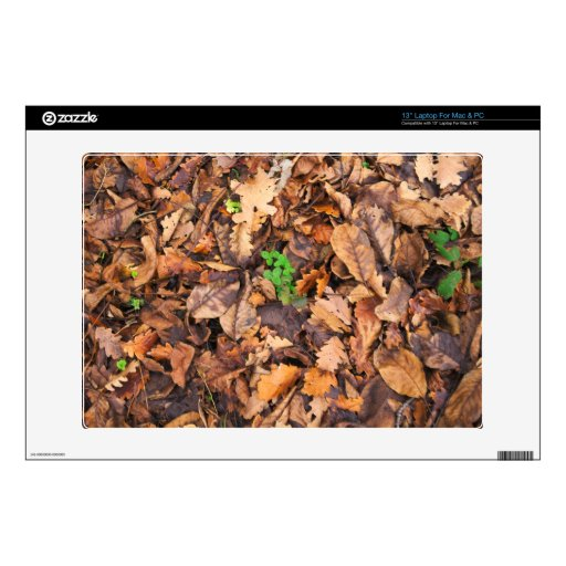 """Autumn Dry Leaves and Green Clovers Decal For 13"""" Laptop"""