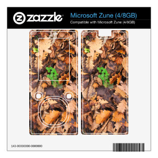 Autumn Dry Leaves and Green Clovers Decal For Zune