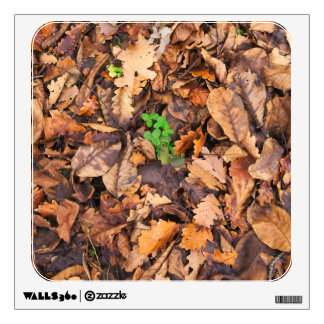 Autumn Dry Leaves and Green Clovers Wall Decal