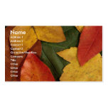 Autumn Ecstacy Business Card Template