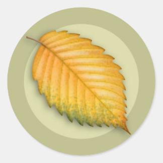 Autumn Elm Leaf Round Sticker