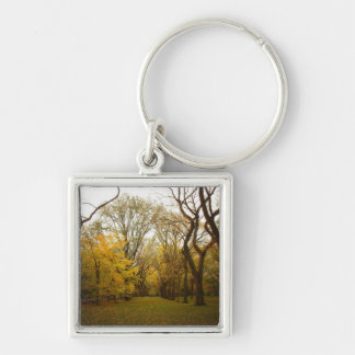Autumn Elm Trees in Central Park, New York City Keychain