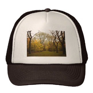 Autumn Elm Trees in Central Park, New York City Trucker Hat