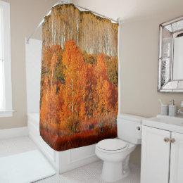 Autumn Fall Color Aspens Kolob Zion Shower Curtain